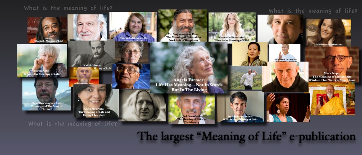 1000+ Interviews on The Meaning of Life – Excellence Reporter