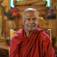 Bhante Gunaratana: The Meaning of Life... the root of all impermanence